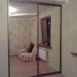 Встроенный шкаф-купе Зеркальный 1