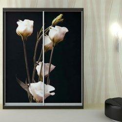 Шкаф-купе 3D фотопечать, Черный, цветы