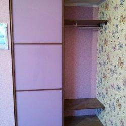 Стеклянная дверь-купе с профилем