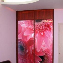 Шкаф-купе 3D фотопечать, Красные цветы