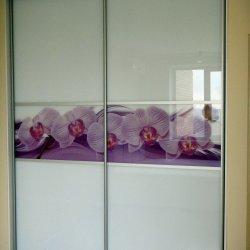 Шкаф-купе - матовое стекло + фотопечать Цветы