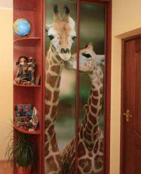 Шкаф-купе с фотопечатью Жирафы