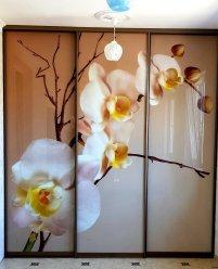 Встроенный шкаф-купе, УФ фотопечать на стекле