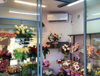 Раздвижная перегородка для цветочного магазина