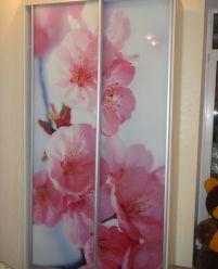 Шкаф-купе с 3-D фотопечатью цветы