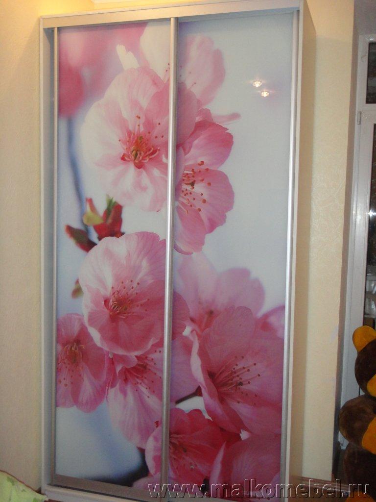 шкаф купе с 3 D фотопечатью цветы мебель на заказ в ростове на